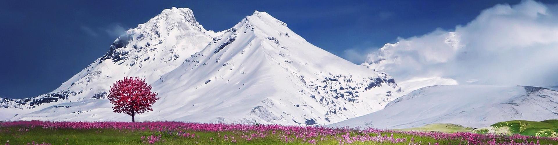 GoNomad - drumetii, trekking, hiking, alpinism, escalada si multe altele